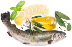 Raw fish (brown trout). Fresh fish with lemon, laurel,  peppercorn and olive oil  on white background Stock Photo