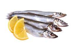 Raw fish capelin with lemon slices isolated Stock Photo