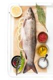Raw fish carp Stock Images