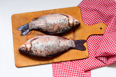 Raw fish carp on Boards for cutting. Two large fresh raw carp on a cutting board close up. river fish Stock Image