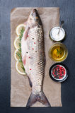 Raw fish carp with herbs and spices Stock Image