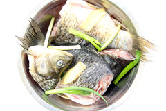 Raw fish Stock Photography
