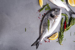 Raw fish cooking and ingredients. Royalty Free Stock Images