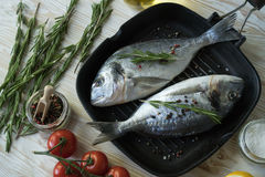 Raw fish cooking and ingredients. Dorado, lemon, herbs and spices. Royalty Free Stock Image