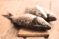Raw fish on a cutting Board. Carp Fish Royalty Free Stock Image