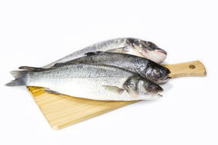 Raw fish on a cutting board. And knife Royalty Free Stock Photo