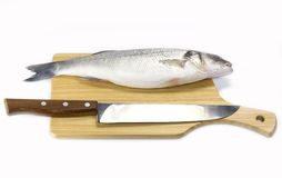Raw fish on a cutting board. And knife Stock Image