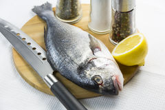 Raw fish on a cutting board. And knife Stock Images