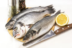 Raw fish on a cutting board. And knife Royalty Free Stock Image
