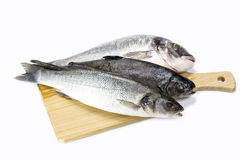 Raw fish on a cutting board Royalty Free Stock Images