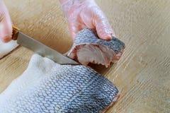 Raw fish. Cutting fresh blyufish women& x27;s hands. Royalty Free Stock Image