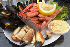 Raw fish dinner. With crab, shrimp and mussels in Norway Royalty Free Stock Photography