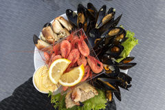 Raw fish dinner. With crab, shrimp and mussels in Norway Stock Photo