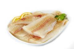 Raw fish fillet. On white plate Royalty Free Stock Images