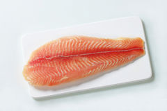 Raw fish fillet. On cutting board Stock Images