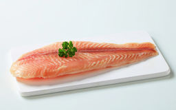 Raw fish fillet. On cutting board Stock Photography
