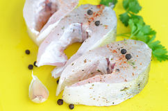 Raw fish fillet with garlic and spices Royalty Free Stock Image