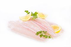 Raw fish fillet Royalty Free Stock Photos
