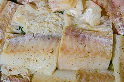 Raw fish fillet Stock Image