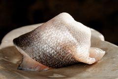 Raw fish fillet - Seabass. On the plate Royalty Free Stock Photo