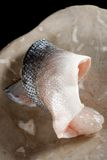 Raw fish fillet - Seabass. On the plate Royalty Free Stock Images