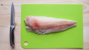 Raw fish fillets ready for frying. Raw fish fillets ready for frying Stock Photography