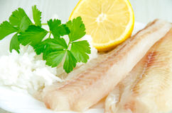 Raw fish fillets and rice Stock Photography