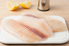 Raw fish fillets Stock Images