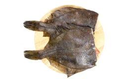 Raw fish flounder Royalty Free Stock Photos