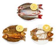 Raw fish, fried fish, bones of fish on plate. Isolated on white background Stock Photo