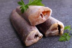 Raw fish hake Royalty Free Stock Images
