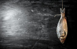 Raw fish hanging on a rope. Stock Photos