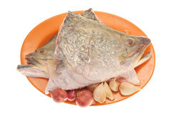 Raw Fish Head Royalty Free Stock Photography