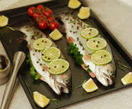 Raw fish. Healthy dinner preparation. Raw trout prepared for dinner. Ready to cook Royalty Free Stock Photography