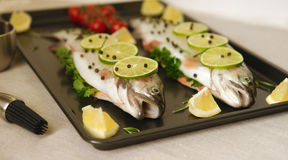 Raw fish. Healthy dinner preparation. Raw trout prepared for dinner. Ready to cook Stock Image
