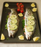 Raw fish. Healthy dinner preparation. Raw trout prepared for dinner. Ready to cook Stock Photography
