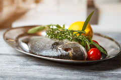 Raw fish with herbs. Royalty Free Stock Image