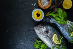 Raw fish with herbs and spices Royalty Free Stock Photography