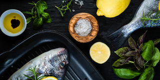 Raw fish with herbs and spices Stock Image