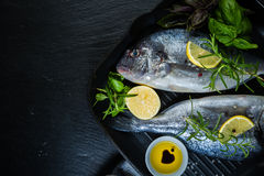 Raw fish with herbs and spices Royalty Free Stock Photo