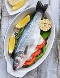 Raw fish with herbs, vegetables and garlic, selective focus Royalty Free Stock Photography