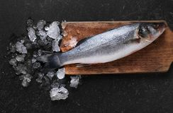 Raw fish with ice. On kitchen table Royalty Free Stock Photo