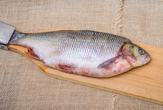 Raw fish ide. On a chopping Board stock photo