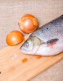 Raw fish ide on a chopping Board. And raw onion royalty free stock image