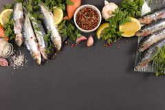 Raw fish and ingredients. Top view Stock Photography