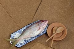 Fish in decorated platter, ready to prepare. Raw fish known as red in Brazil, on plate Stock Image
