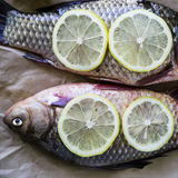 Raw fish with lemon on a cutting board Royalty Free Stock Image