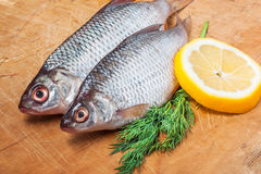 Raw fish with lemon and dill Royalty Free Stock Photo