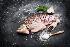 Raw fish with lemon, herbs and spices on dark vintage background. Delicious fresh fish on dark vintage background. Fish with aromatic herbs, spices and Royalty Free Stock Photo