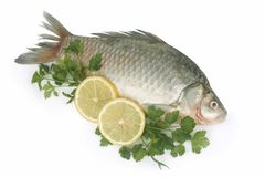 Raw fish with lemon and parsle Royalty Free Stock Photos